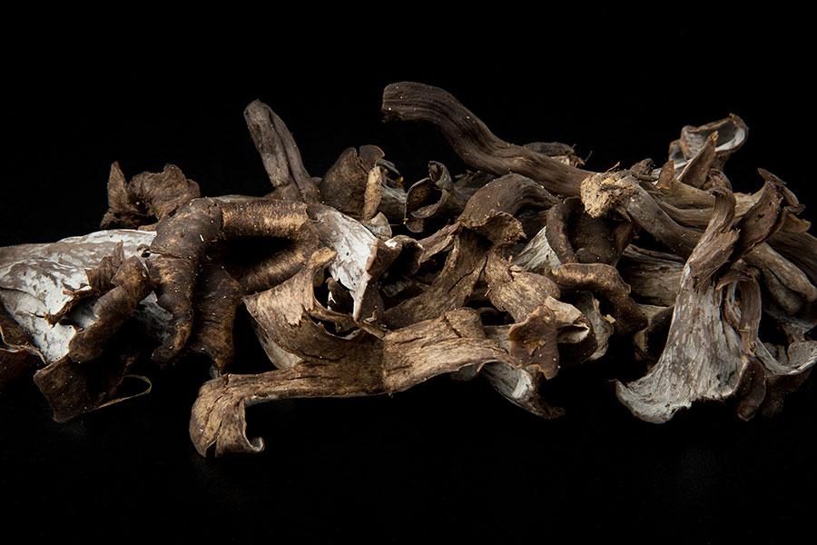 trompetas de la muerte